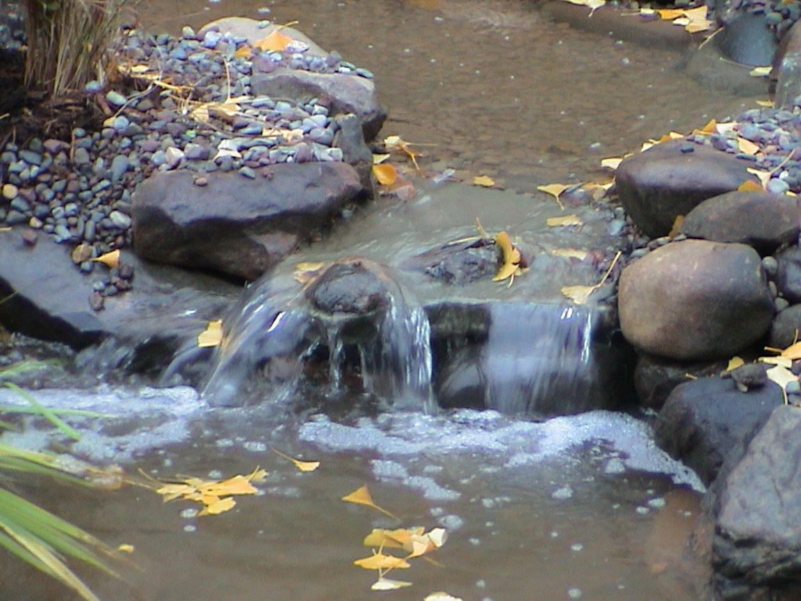 Waterfall into Aquascape Pond.JPG
