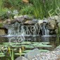 Wide Waterfall into Natural Koi Pond